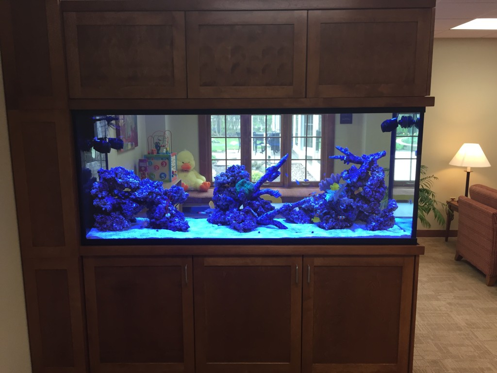 Aquapros custom aquarium at hospice of buffalo new york for Fish tank divider